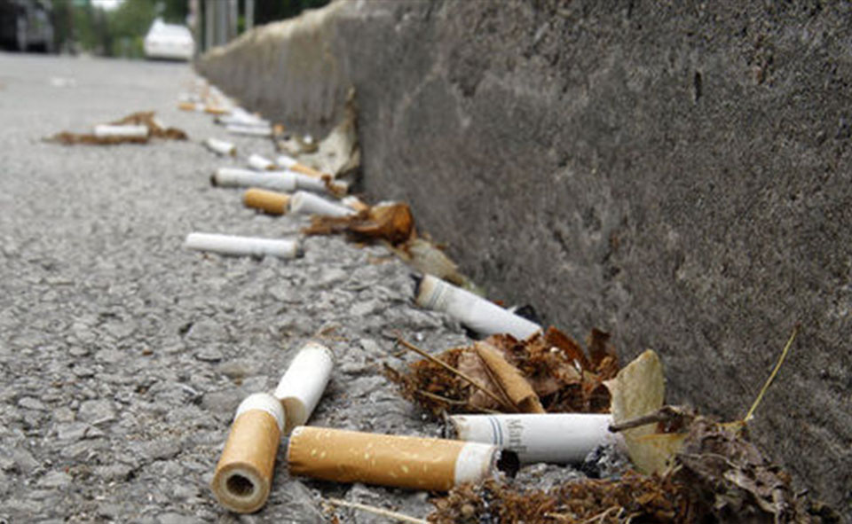 Cigarrette butts litter