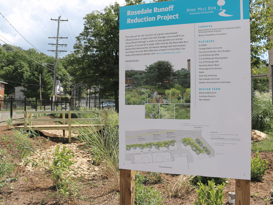 Rosedale Runoff Reduction Project