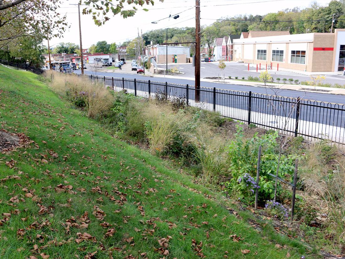 Crescent Stormwater Garden Pittsburgh PA
