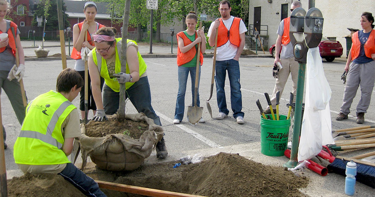 Volunteers planting trees Pittsburgh PA