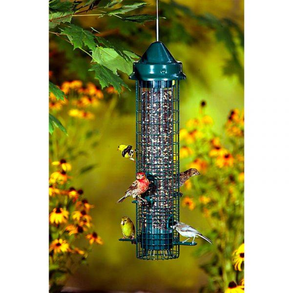 Squirrel Buster Bird Feeder – Classic