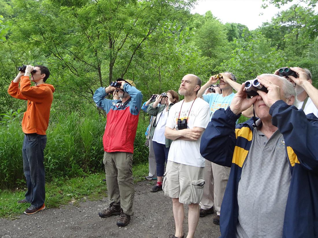 Group with binoculars