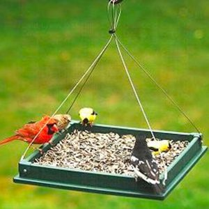 Large Platform bird feeder